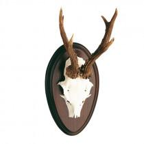 BOESE Rehschild oval 25x15cm dunkel